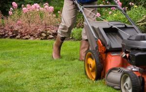 Tipp: Zeit und Arbeit sparen dank Rasenmäher-Roboter