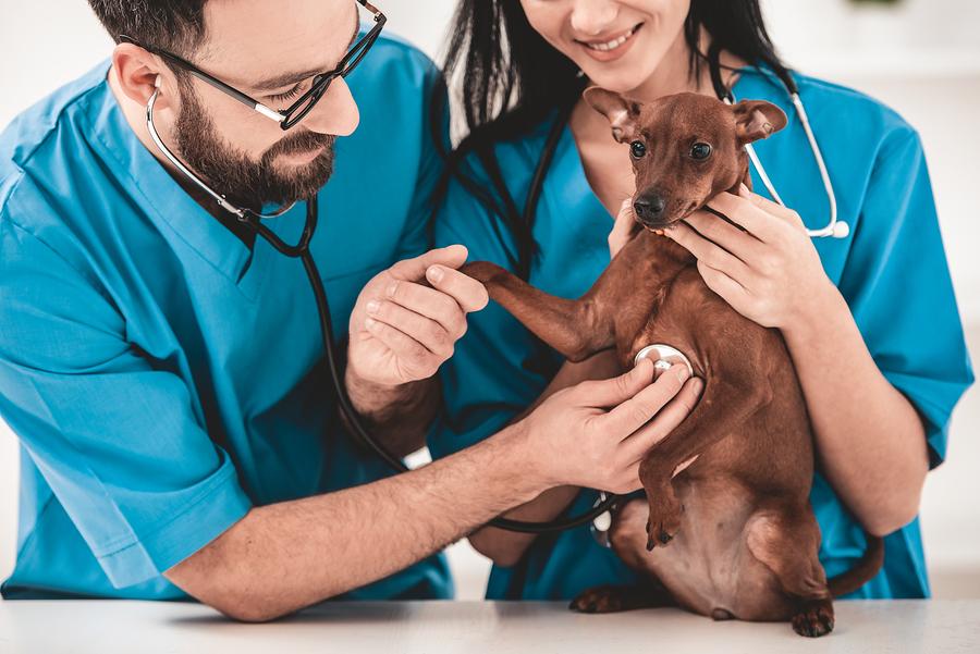 Stockfoto-ID: 245232811 Copyright: VadimGuzhva/Bigstockphoto.com